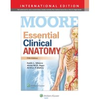 Essential Clinical Anatomy by Anne M. R. Agur, Arthur F. Dalley, Keith L. Moore (Paperback, 2014)