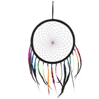 Multicolour Feather Dreamcatcher Pack Of 2