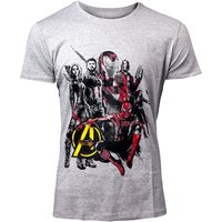 MARVEL COMICS Avengers: Infinity War Men's Characters T-Shirt, Large, Grey (TS030075AVG-L)