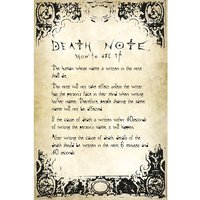 Death Note Rules Maxi Poster