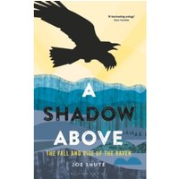 A Shadow Above : The Fall and Rise of the Raven