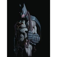 All Star Batman Rebirth: Volume 1: My Own Worst Enemy Hardcover