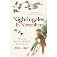 Nightingales in November : A Year in the Lives of Twelve British Birds