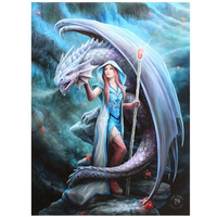 Small Dragon Mage Canvas Picture by Anne Stokes