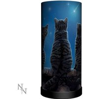 Wish Upon A Star Cat Lamp