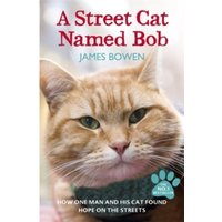 A Street Cat Named Bob : How one man and his cat found hope on the streets Paperback