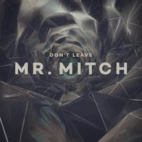 Mr. Mitch - Don't Leave Vinyl