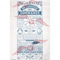 Harry Potter Quidditch at Hogwarts Maxi Poster