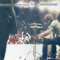 Cardigans - First Band On T...