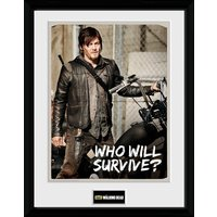 The Walking Dead Daryl Collector Print