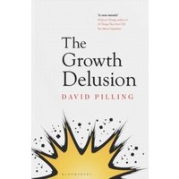 The Growth Delusion : Why economists are getting it wrong and what we can do about it