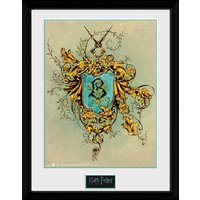 Harry Potter Beauxbatons Framed Collector Print