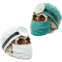 Gothic Collectable Skull Doctor Decoration (1 Random Supplied)