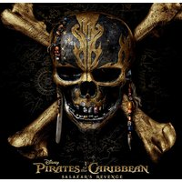 Pirates of the Caribbean - Skull Canvas