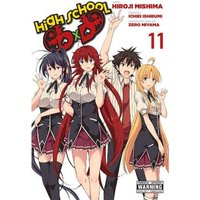 High School DxD, Vol. 11 Paperback