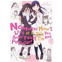 No Matter How I Look at It, It's You Guys' Fault I'm Not Popular!, Vol. 12 Paperback
