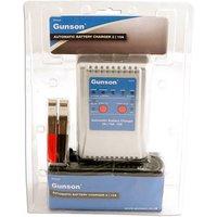 Machine Mart Xtra Gunson 77117 - 2 Amp / 10 Amp Battery Charger