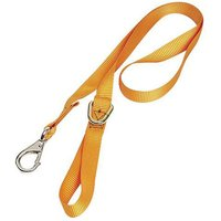 Lifting & Crane Lifting and Crane CSSS Chainsaw Safety Strap