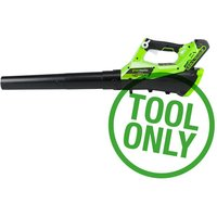 Greenworks Greenworks GWG40AB 40V Axial Blower  Bare Unit