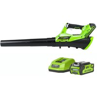 Greenworks Greenworks G40ABK2 Axial Blower with 2Ah Battery and Charger  40V