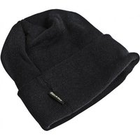 Dickies Dickies Thinsulate Watch Hat
