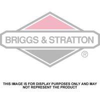 Briggs & Stratton Briggs & Stratton 4HP Sprint Petrol Engine