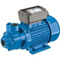 Clarke Clarke BIP1500 1 Electric Water Pump
