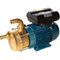 Obart Select Obart ENM25 S Bronze 1 5kW Transfer Pump  110V