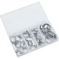 Clarke Clarke CHT672 Assorted Hose Clip Set