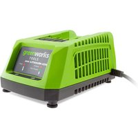 Greenworks Greenworks GWG24C 24V 45 Minute Charger