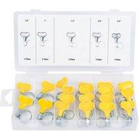 Machine Mart 20 Piece Key Type Hose Clamp Assortment