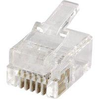 econ connect Modular-Stecker MPL66, 6P6C für Flachkabel