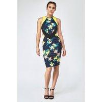 3d Flower Print With Colour Block Contrast Bodycon Dress