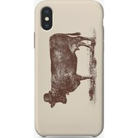 Cow Cow Nut iPhone Case