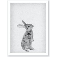 Frolein Rabbit I Art Print
