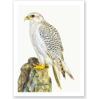 Birds III Print