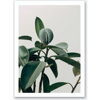 Green Leaves with Grey Background Art Print