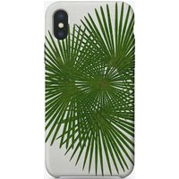 Fan Palm iPhone Case