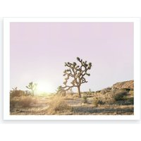 Desert Sunset II Art Print