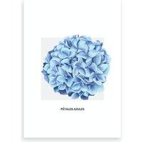 Blue Ball Flower & Grey Box Art Print