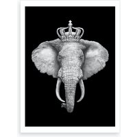 The King Elephant On Black Art Print
