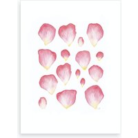 A Family Of Petals Art Print