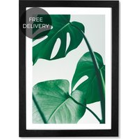 Monstera Plant by Rafael Farias, 65 x 90 cm (A1) Framed Wall Art Print