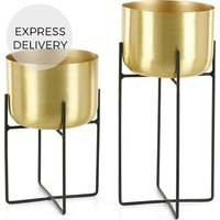 Product photograph showing Salix Set Of Two Large Plant Stands Brass