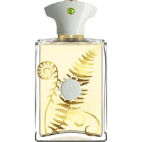 Amouage Bracken Man Eau de Parfum (100ml)