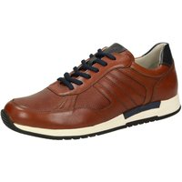 Sioux Low Top Trainers brown (37642)