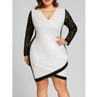 Plus Size Lace Panel Two Tone Fitted Dress
