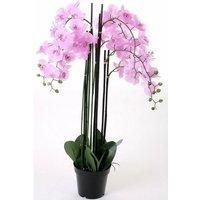 OTTO Kunstorchidee »Orchidee XXL«