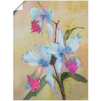 Artland Wandbild »weiß-blaue Orchidee«, Blumen (1 Stück)