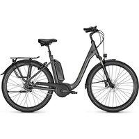 Raleigh E-Bike »KINGSTON 8 XXL«, 8 Gang Shimano Nexus Schaltwerk, Nabenschaltung, Mittelmotor 250 W